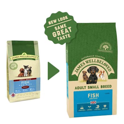 James Wellbeloved Dog Small Breed Adult Fish & Rice 1.5kg