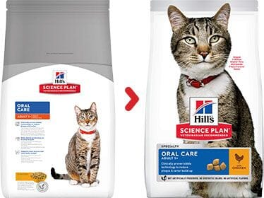 Hill's Science Plan Feline Adult Oral Care Chicken