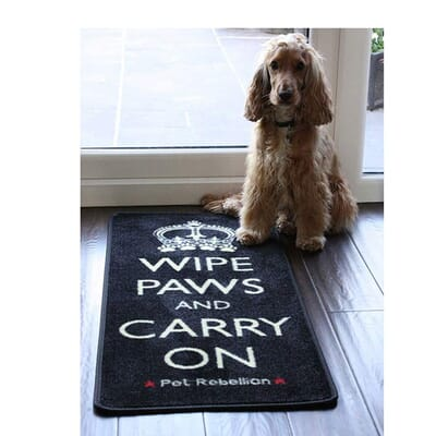 Wipe Paws & Carry On